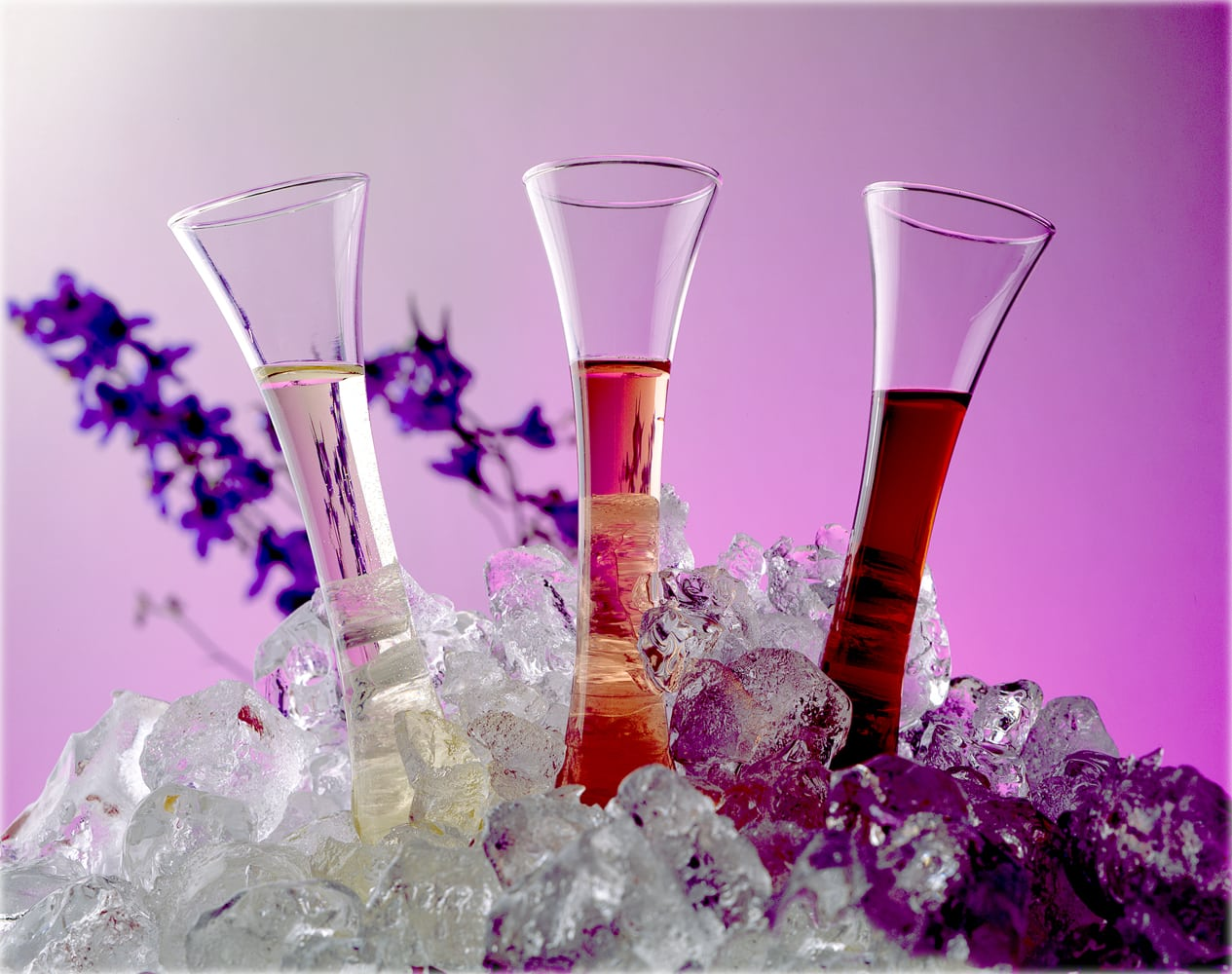 three test tube-like fluted glasses fanned and embedded in ice cubes with white, rose and read wine in them and a magenta background with purple flower props Product Photography