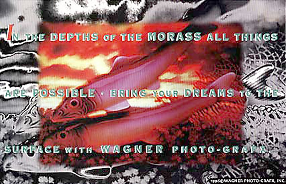 Ad Card for Wagner Photo-Grafx featuring surreal photo of two fishes on orange background surrounded by black and white version and copy over print Product Photography