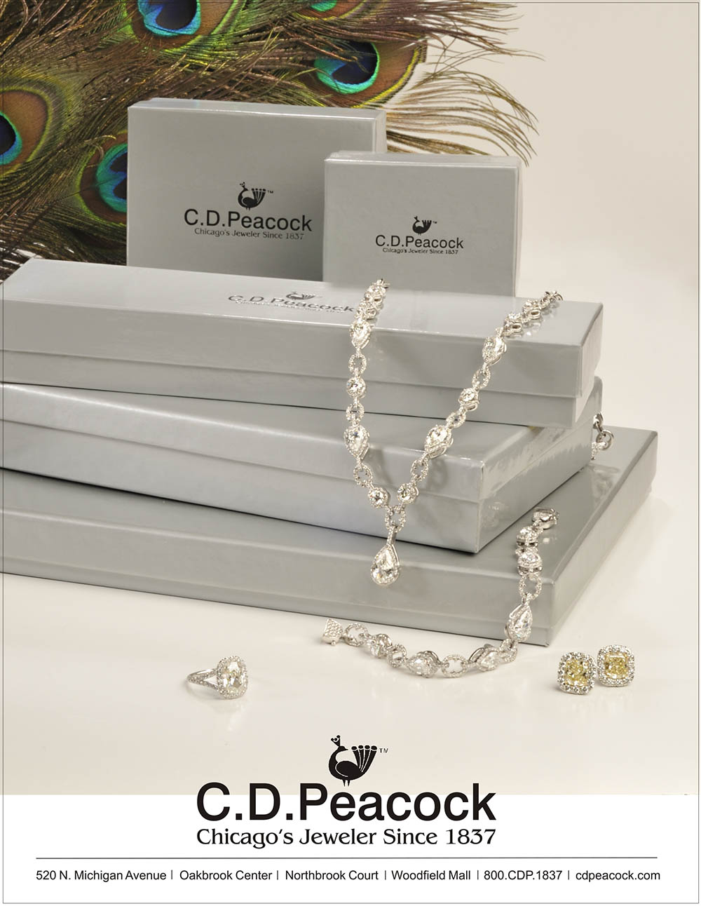 Front cover of CD Peacock Jewelry with jewelry draped over store boxes and peacock feathers in background Jewelry Photography
