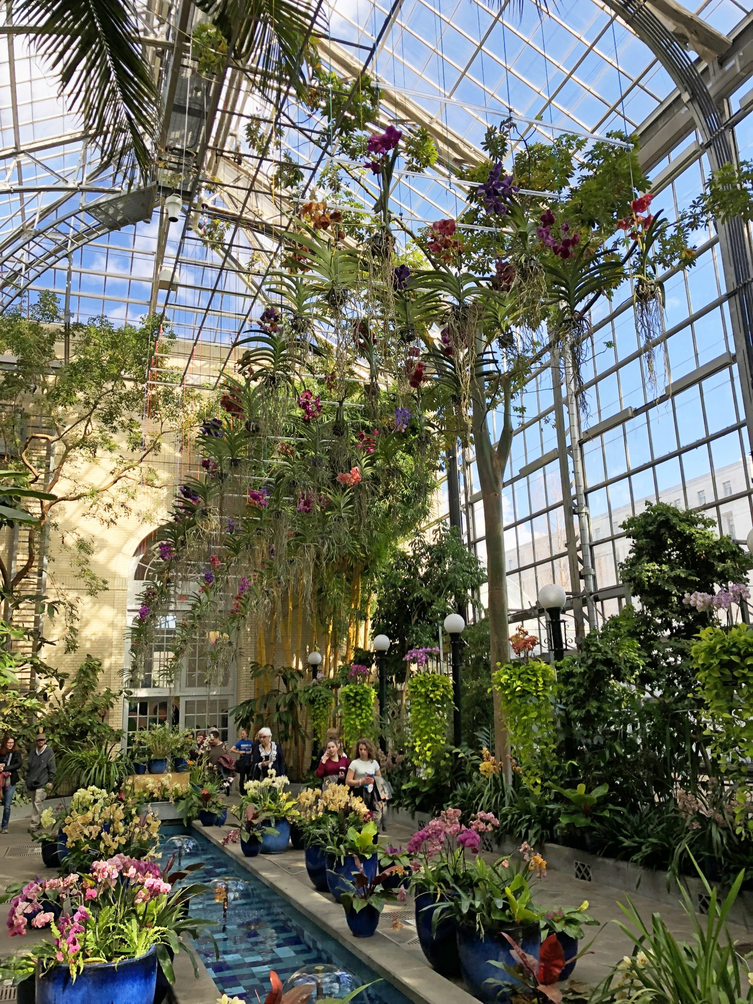 Botanic gardens with lush flowers and foliage draped inside of glass structure